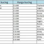 Berikut ini adalah daftar harga kucing termahal di dunia