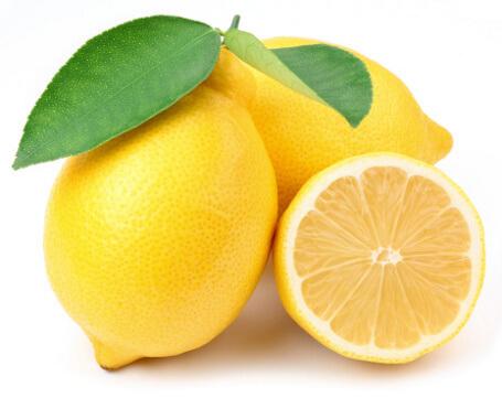 jeruk lemon untuk kutu kucing