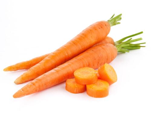 wortel untuk kelinci