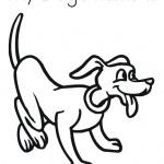 Memilih nama yang ideal untuk anjing peliharaan