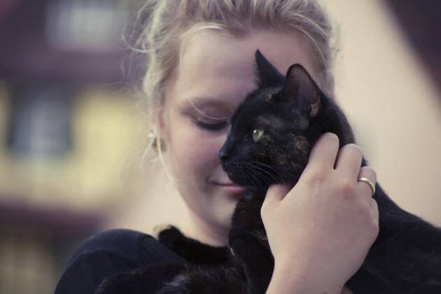 hubungan pemilik dan kucing
