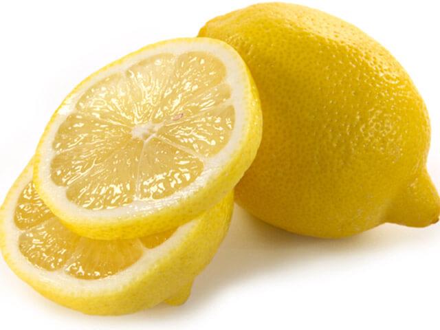 lemon untuk anjing