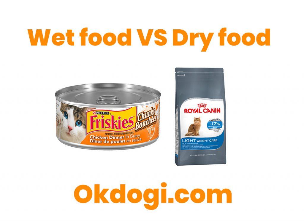makanan basah dan kering kucing