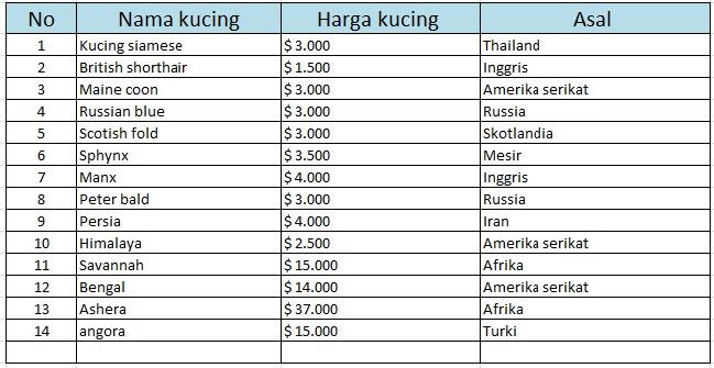 Daftar harga kucing pure breed di dunia