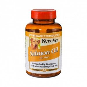 minyak ikan untuk anjing