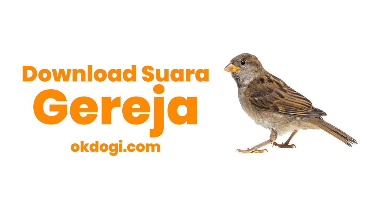 Download suara gereja