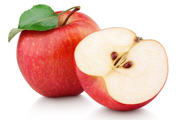 apel untuk kelinci