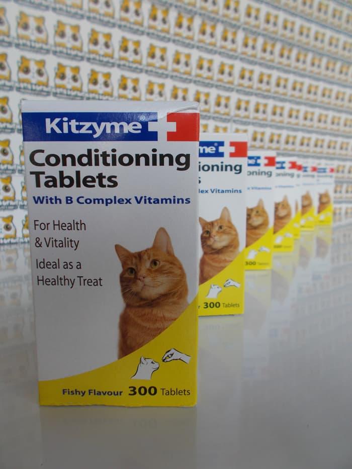 Kitzyme untuk kucing
