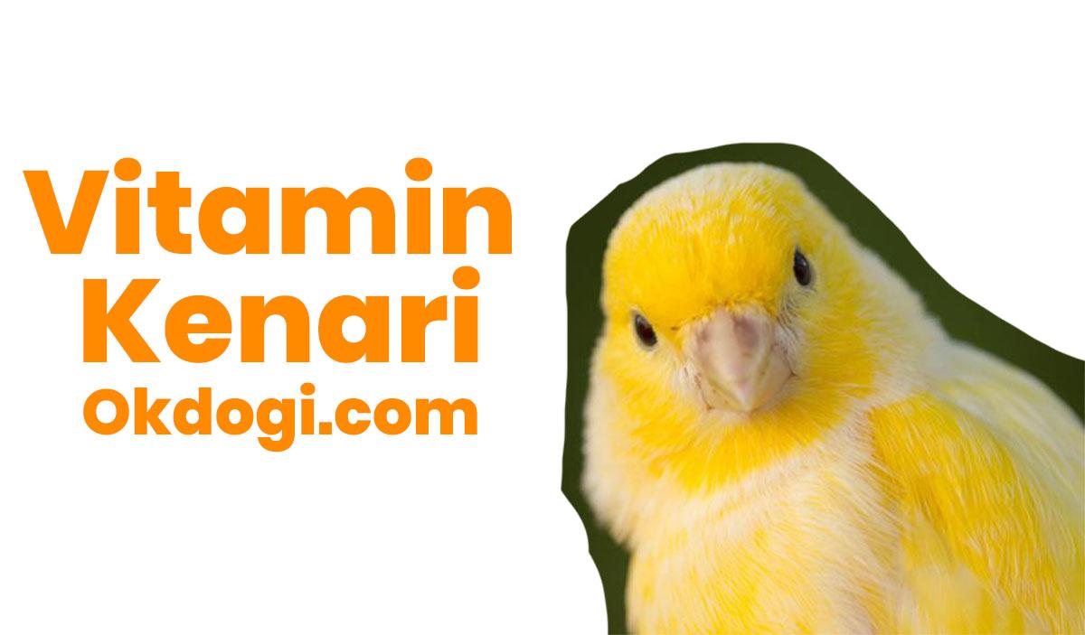 vitamin kenari