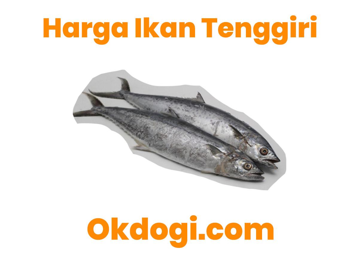 Harga Pasaran Ikan Tenggiri Terbaru 2019, UPDATE TERUS!