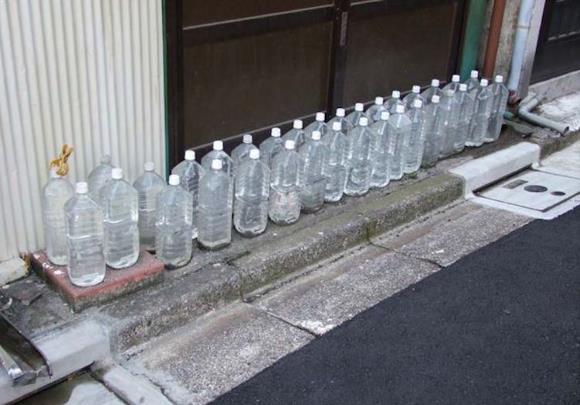 Usir kucing dengan botol air