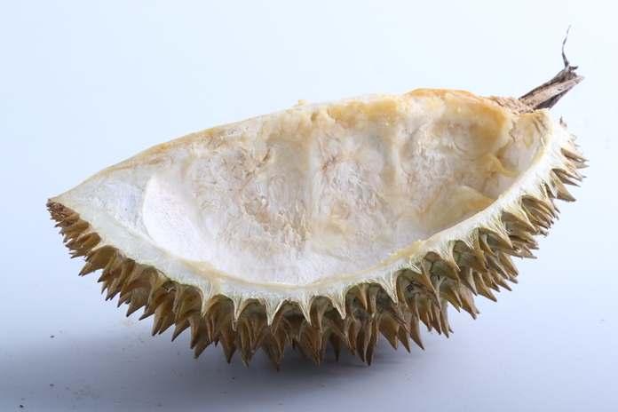 kulit buah durian