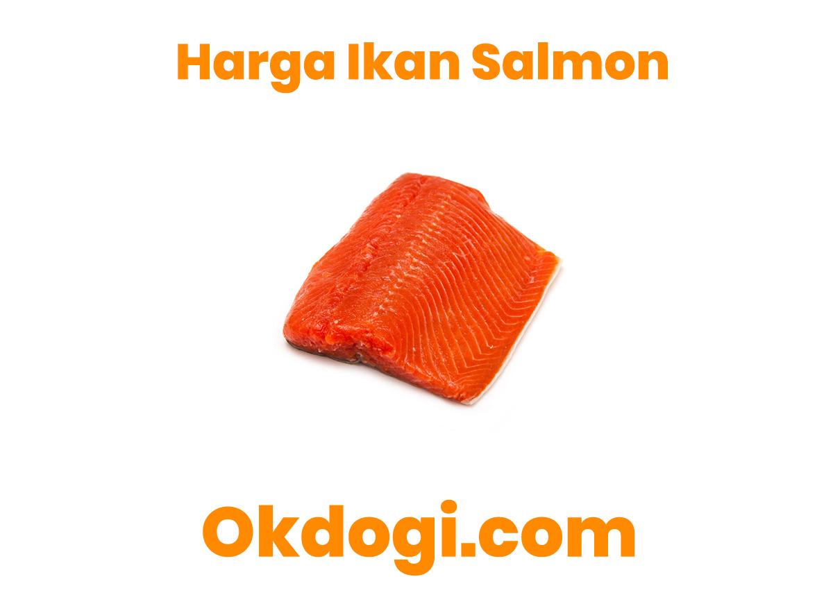 Harga Pasaran Ikan Salmon Terbaru 2019, SURVEY LANGSUNG!