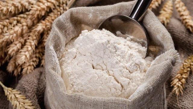 tepung terigu untuk mengusir semut