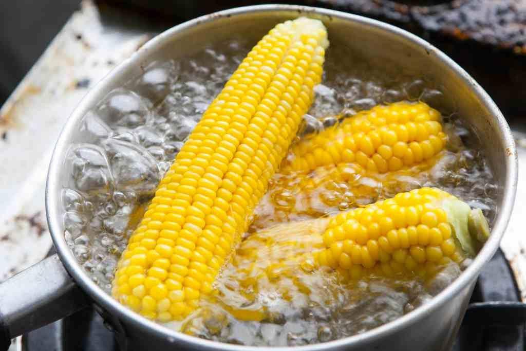 makanan ikan jagung rebus